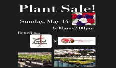 Youth Plant Sale